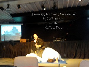 Tsunami Relief Demo